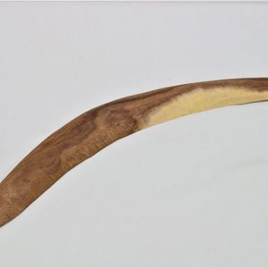19-103-Boomerang-Polly-Charra